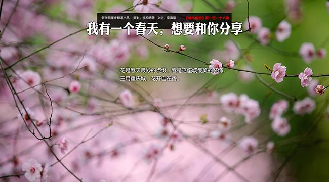 【兴发娱乐xf187手机版相册】我有一个春天,想要和你分享