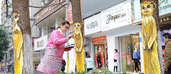 """重庆首条创意步行街亮相 树干,墙面都成""""艺术品"""""""