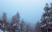 重庆多个景区再迎降雪