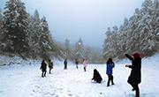 赏雪时节 重庆多个景区再迎降雪