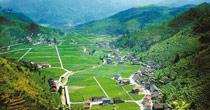 重庆农业综合开发 高标准农田达169万亩