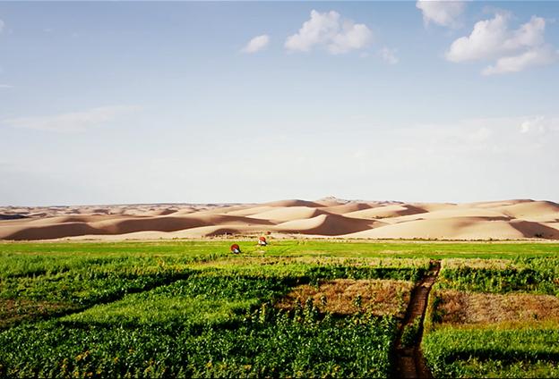 對土壤力學性能展開持續研究