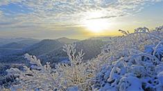 武陵山国家森林公园银装素裹