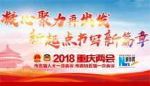 2018重庆两会专题报道