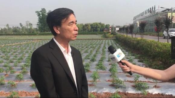 村支書鄭長春介紹全村産業發展情況