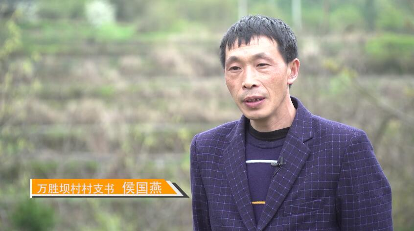 萬勝壩村村支書候國燕介紹村子産業情況