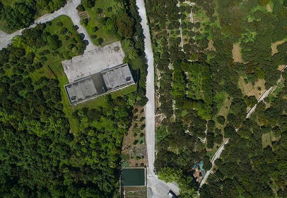新華鷹航拍涪陵睦和村千畝果樹林