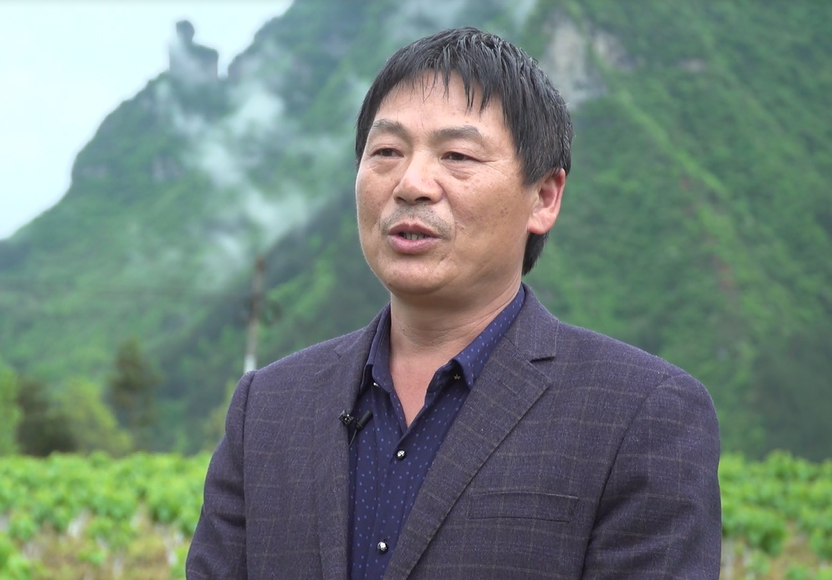 【採訪】重慶市黔江區嫣鬟農業股份合作社監事長龐一文