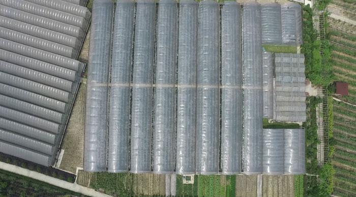 航拍北碚虎頭村現代生態觀光農業園