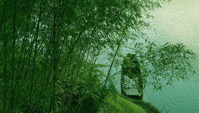 游重庆梁平百里竹海 看竹乡品竹情赏竹韵