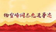 杨雪峰同志先进事迹