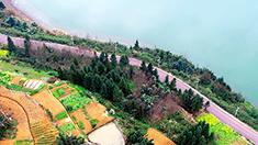 重慶萬盛:板遼湖畔春色舒畫卷