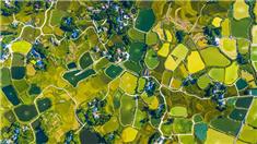 重慶梁平:山水田園繪就豐收圖景