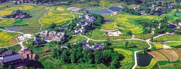 西彭:鄉村振興三種産業發展模式