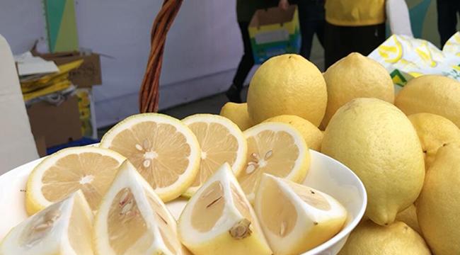 潼南國際檸檬節開幕 精彩看點都在這裏