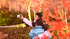 濃濃年味等你來打卡 重慶三峽廣場點亮迎春燈飾
