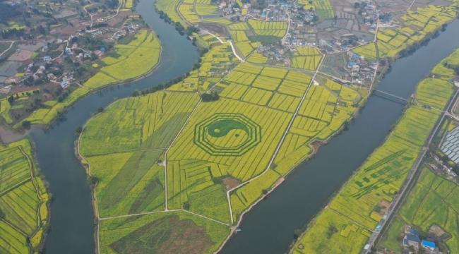 重慶潼南萬畝油菜花海景區開放 嚴格控制遊客量