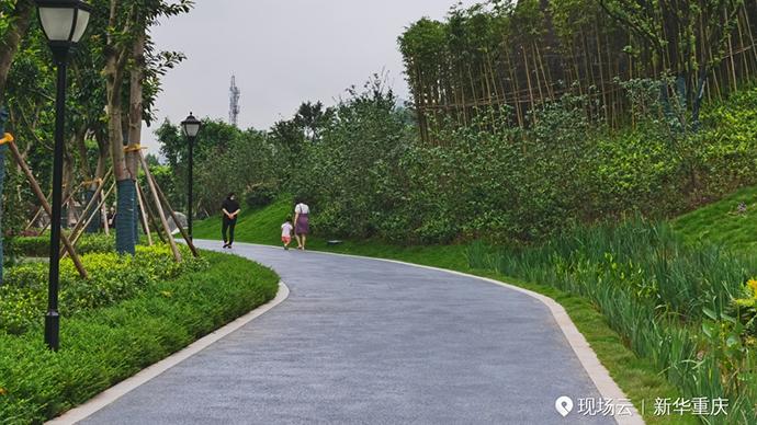 坡坎崖變公園!城市提升讓山城市民近享綠意活力生活