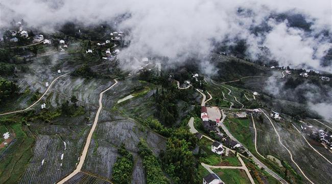 重慶開州:山村新貌