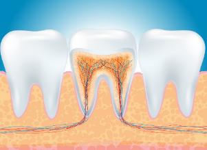 牙病越拖越嚴重 你知道該如何保護好牙齒嗎?