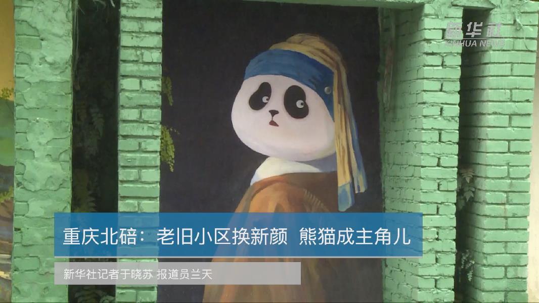 重慶北碚:老舊小區換新顏 熊貓成主角兒