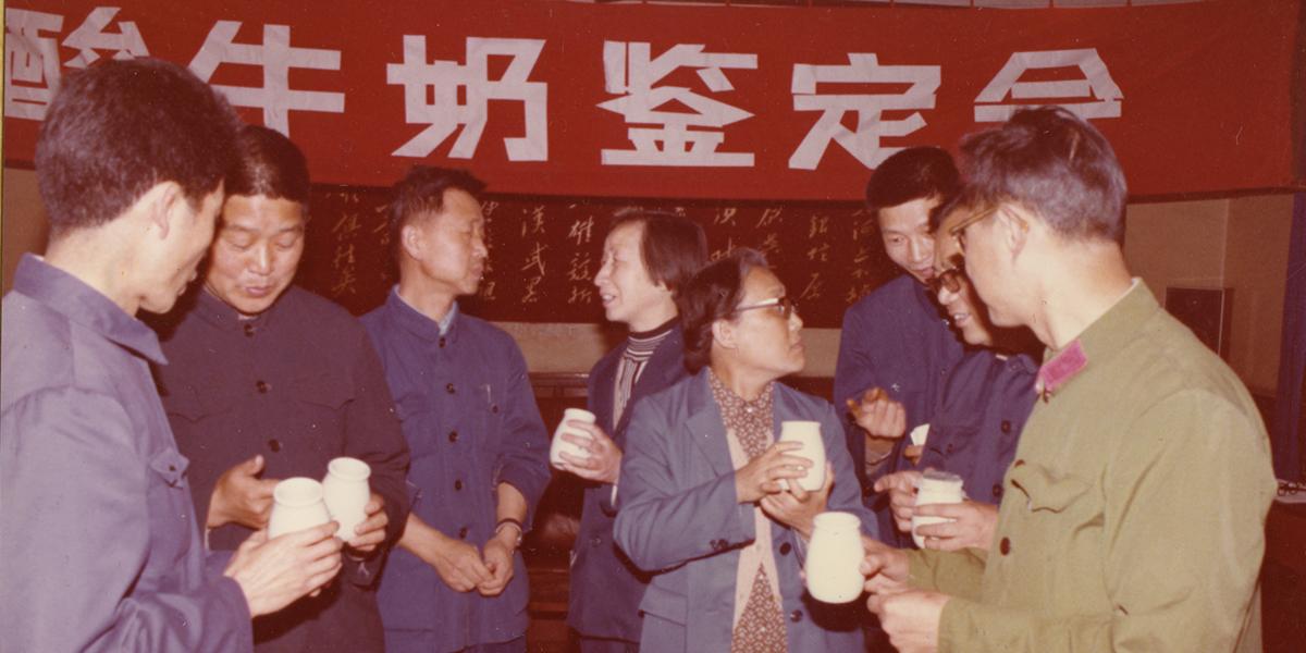 80年代初酸牛奶鉴定会。