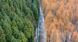 航拍雪后山王坪 赏林海雪原美景